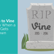 alternatives to vine