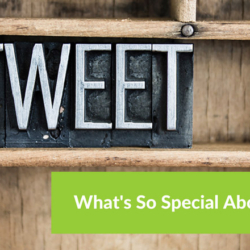 What's So Special About Twitter?