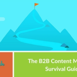 The B2B Content Marketing Survival Guide